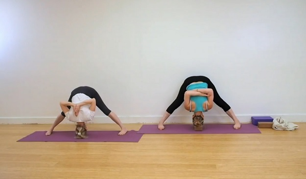 Beginner Iyengar yoga class video