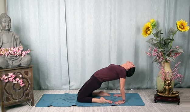 Hatha Yoga Joy full-body stretch yoga class video