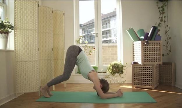 Raja yoga slow flow class video